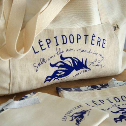 Lépidoptère Finistère