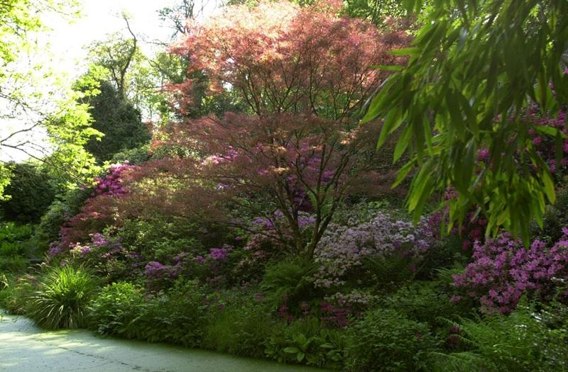 la-vallée-du-bas-jardins-de-kerdalo