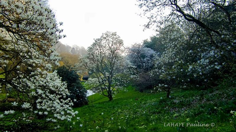 le-canal-2-jardins-de-kerdalo